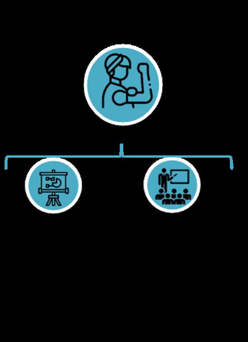 Fase plan de acción para la elaboración del plan de igualdad de empresa