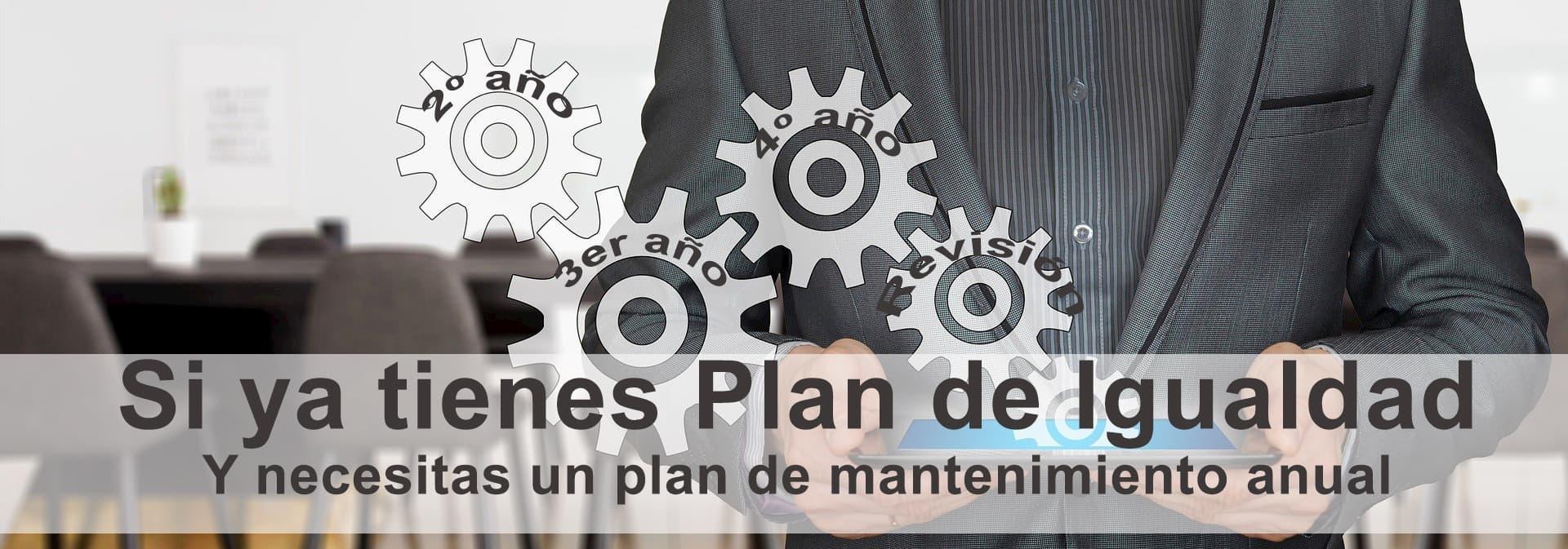 precio-plan-igualdad-mantenimiento-anual
